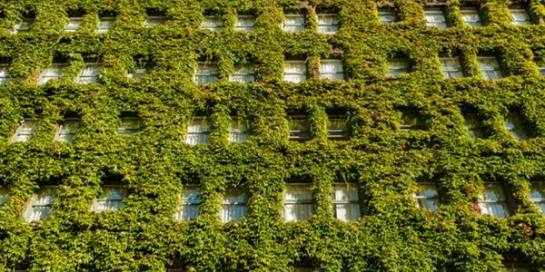 fachada con jardin vertical